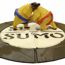 Sumo, Sumoringer, Funsport Hpfburg LioLop.ch