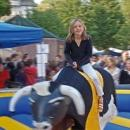 Bullriding / Rodeo