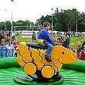 Entenrodeo, Kinderrodeo, Duck riding, Simulator Rodeo | Eventmodul mieten