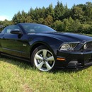 2013 Ford Mustang GT V8 5.0 Cabrio ... 426 PS...RIDE THE PONY!