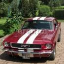 Ford Mustang V8 BJ.1966 Kultauto