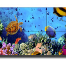3x2 ProHalt STEGLOSE Display Videowall (H x B: 115, 6 cm x 307, 8 cm) | Plasma fr Messe und Event
