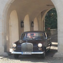 Mercedes 230 Heckflosse