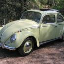 VW Kfer mit Faltdach 