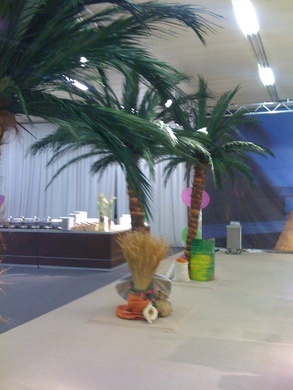Palmen palmen