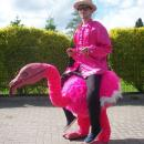Walking Act - Flamingo