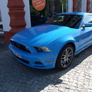 Ford Mustang 5.0 GT V8 Coup� MY 2014