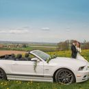 Ford Mustang GT Cabrio V8 oder Shelby Cabrio